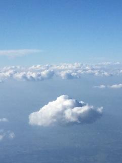 slowlife, la tête dans les nuage