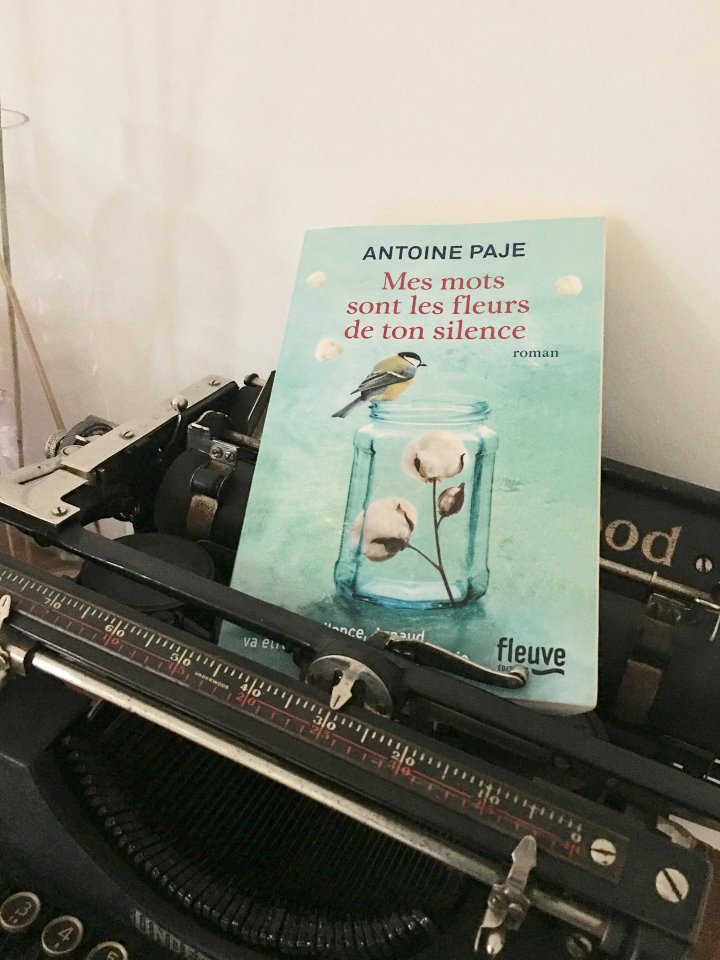 Roman Mes mots sont les fleurs de ton silence Antoine Paje